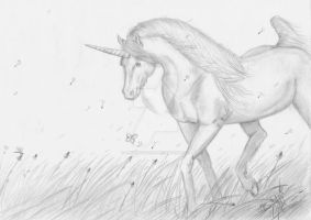 Unicorn in Field by AnneRiceBowl