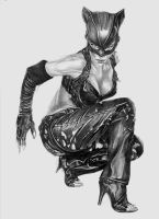 Halle Berry as Catwoman by Imaginartion