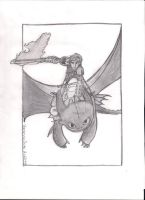 How to Train Your Dragon 2 Poster by aquavanessa27