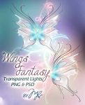 Wings Fantasy PSD-PNG! by Maryneim