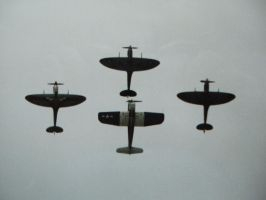 breitling fighters display 2 by Sceptre63