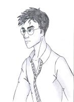 Harry Potter by ribkaDory
