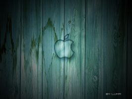 Wood apple by Lumir79
