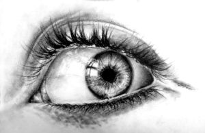 Charcoal eye study by BannanaPower