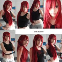Erza Scarlet TEST by DidsRainfall