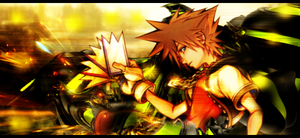 Kingdom Hearts: Sora - SIGNATURE by Silas-Tsunayoshi