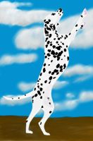 Dalmatian by Spaik-The-Wolf
