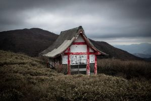 Hakone Shinto Shrine by Natures-Studio