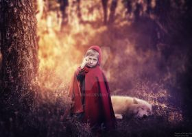 The Little Red Riding Hood by rain-onme