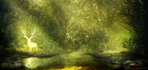Forest stream V.2 by Aeflus