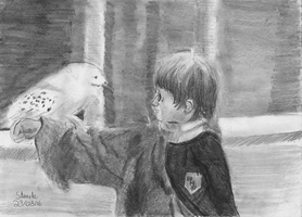 Harry Potter and Hedwig by SulaimanDoodle