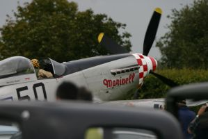 on the ground P51 by Sceptre63
