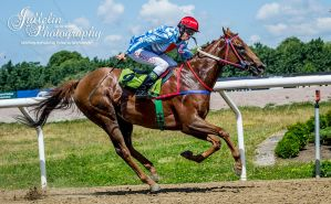 Horse Racing 482 by JullelinPhotography