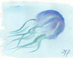 Jellyfish by ViridianVenus