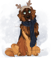 Winter Pupalecki by Aibyou