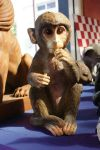 Adorable Monkey LARGER FILE STOCK by scratzilla
