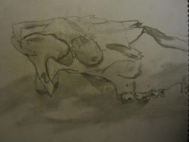 Moose Skull Realism Sketch by lXxLinkinxXl