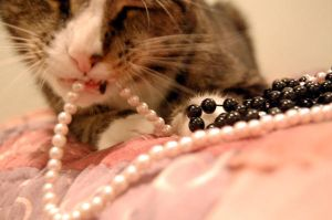 Pearls and Talons by lancheney