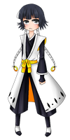 Captain Soi Fon by Gold-Cadet