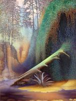 Fern Canyon by spiritualartist