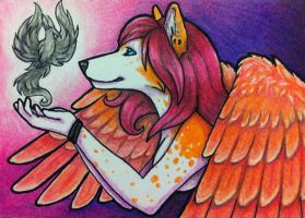 ACEO - Tiikay with Phoenix Commission by Crazdude