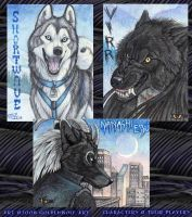 Three Badges by Goldenwolf