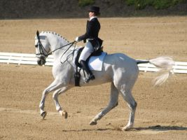 Cantering 12 by SoloPianoStock