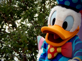 Donald Duck by TheWitchNamine