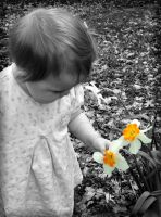 Luci and a daffodil by travestyoflife