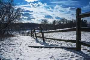Frozen Farm by JustinDeRosa