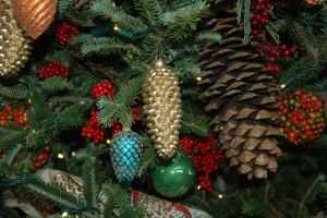 Christmas Pine Cones by Gryffgirl