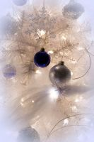 Christmas Ornaments by Chris-T-Photography