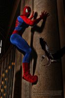 The Amazing Spiderman by Brucer007