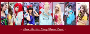 Touch 2014 - Disney Princess Project by pipubanh