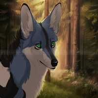 Forest Light by InstantCoyote
