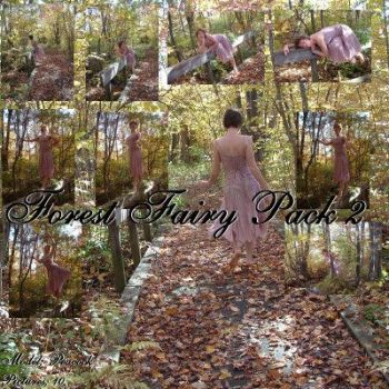 Forest Fairy Pack 2 by Nekoha-stock