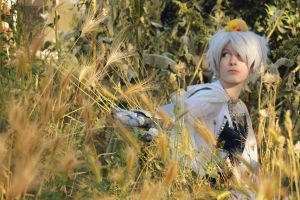Child's play - Teutonic Prussia cosplay by Voldiesama