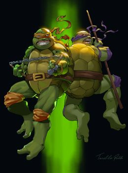 TMNT Michaelangelo and Donatello by Tarees