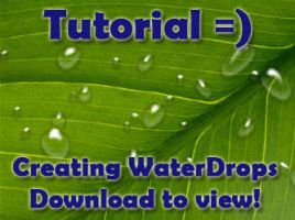 Water Drops Photoshop Tutorial by Naomi89