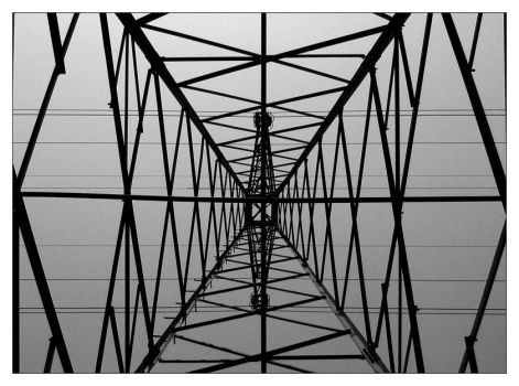 wireframe spider web by silvus