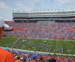 Number One in Gainesville by zachn