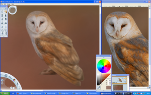 Barn Owl WIP Screenshot by jinkies36