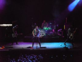 McFly live concert by McLeea