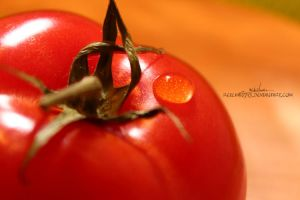Tomato by reichan79