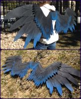 Collapsible Griffin Wings by ThePinkPoudo