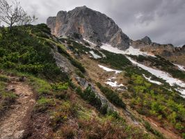 Steep Path by Burtn