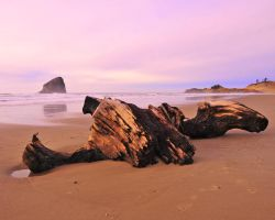 Oregon Beach by flatsix911