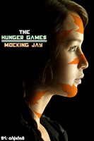 The Hunger Games by ahjxhs8