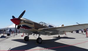 P-40 Hawk by bustersnaps