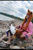 Spice and Wolf - Horo 22 by namstar91